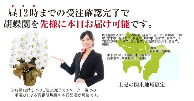 東京エリアの花配達可能地域