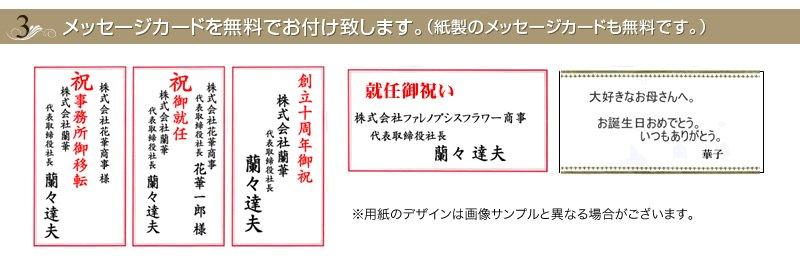 胡蝶蘭にはメッセージカードを無料で付けられます