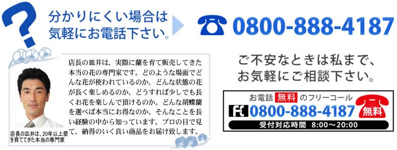 お客様専用フリーコール 0800-888-4187